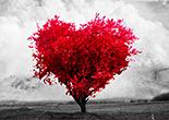 canciones de amor para dedicar